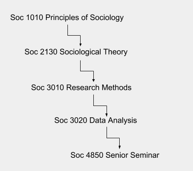 Sociology course sequence